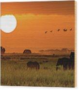 African Elephants Walking At Golden Sunrise Wood Print