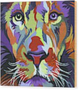 African Lion Wood Print