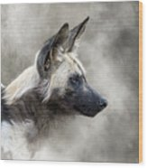 African Wild Dog In The Dust Wood Print
