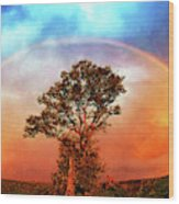 After The Storm, California Foothills                        Wood Print