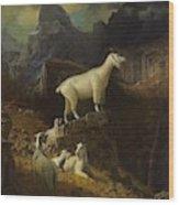 Albert_bierstadt_-_rocky_mountain_goats Wood Print
