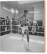 Ali In Training Wood Print