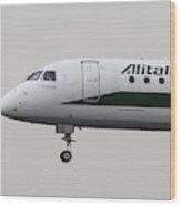 Alitalia Embraer 190 And Bird  Wood Print