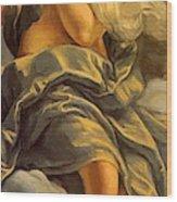 Allegoria Dell Inclinazione 1615 Wood Print