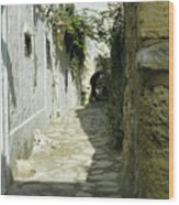 alley in Hammamet, Tunisia Wood Print