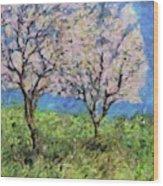 Almonds In Full Bloom Wood Print