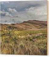Along The Scottish Highlands Wood Print