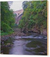 Along The Wissahickon At The Henry Avenue Bridge Wood Print