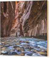 Amazing Landscape Of Canyon In Zion Wood Print