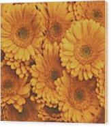 Amber Soaked Wood Print