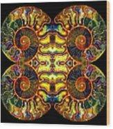 Ammonite Mandela - 044.1 Wood Print