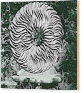 An Abstract Wooden Sculpture Wood Print