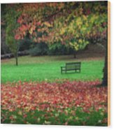 An Autumn Bench At Clyne Gardens Wood Print