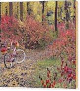 An Autumn Bike Trek Wood Print