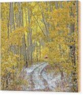 An Autumn Path Wood Print