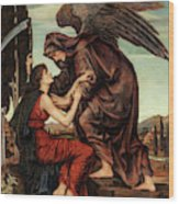 Angel Of Death, 1880 Wood Print