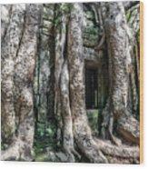 Angkor Roots Wood Print