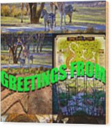 Animal Kingdom Custom Greeting Card Wood Print