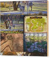 Animal Kingdom Lodge Poster A Wood Print