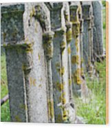 Annapolis Royal Gravestones Wood Print