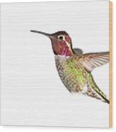 Annas Hummingbird - Male, White Wood Print
