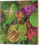 Anthurium Riot Wood Print