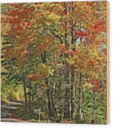Appalachian Backroads Wood Print