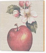 Apple And Blossoms Wood Print