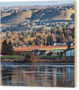 Apple Country Along The Columbia River Wood Print