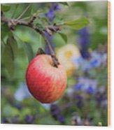 Apple On The Tree Wood Print