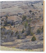 April Badlands Near Amidon Wood Print