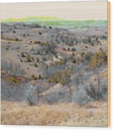April Day Reverie Wood Print