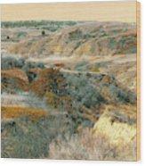 April Domain In Dakota West Wood Print