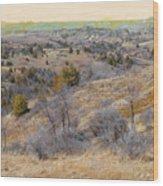 April Prairie Reverie Wood Print