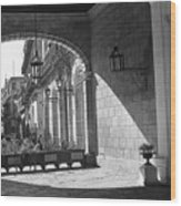 Arch And Shawdow Wood Print