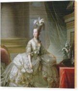 Archduchess Marie Antoinette  Wood Print