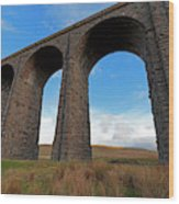 Arches And Piers Of The Ribblehead Viaduct North Yorkshire Wood Print