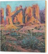 Arches National Park II Wood Print