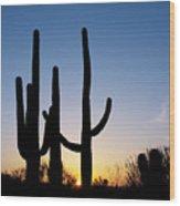 Arizona Cacti, 2008 Wood Print