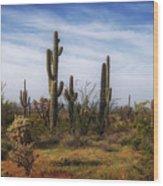 Arizona Dreaming Wood Print
