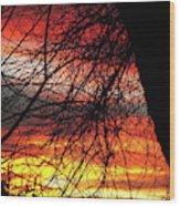 Arizona Sunset Through Branches Wood Print