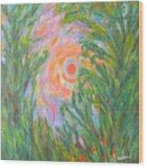 Around The Sun Wood Print