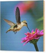 Art Of Hummingbird Flight Wood Print