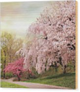 Asian Cherry Grove Wood Print