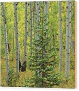 Aspen Christmas Tree Wood Print