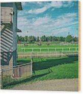 At The Racetracks #2 Wood Print