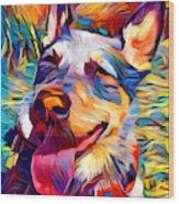 Australian Cattle Dog 2 Wood Print