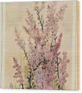 Australian Wild Flowers  8 Wood Print