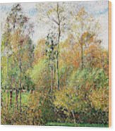Automne, Peupliers, Eragny - Digital Remastered Edition Wood Print
