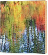 Autumn Color Reflection Wood Print